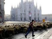 anteprima Roma 'L'ULTIMO PASTORE' documentario rivelazione MARCO BONFANTI