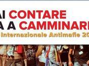 contare inizia camminare: carovana antimafie 2013 Pavia