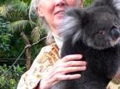 Jane Goodall Umbria, Francesca Rossi: Tutti devono conoscere!