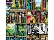 Sistemare libri casa