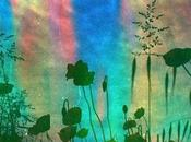 Rainbow Poppies Soapy Film Mustolina)