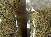 Ricette: tisana alla canapa