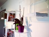 Lavorazione plexiglass Roma: mensole cubi trasparenti misura.