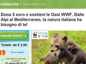 Groupon insieme coupon solidale