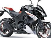 Kawasaki 1000 Special Edition 2013