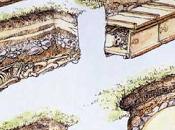 trasformazioni rituali funerari romana alto medioevo