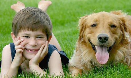"""Con i cani"""" ludoteca e progetti di pet therapy per i bambini"""