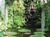 Giardini Mortella, Ischia