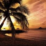 summer-ipad-wallpaper-19