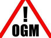 Ogm, firmato decreto stop coltivazioni Italia