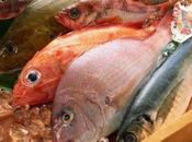 governo pescivendoli