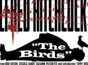 Birds: grido muto