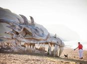 #mistero: testa #drago spiaggia