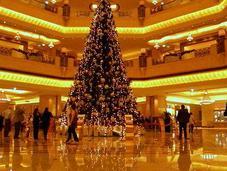Tutta verità sull'albero Natale costoso mondo