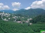 SPUMANTI ITALIANI: Prosecco avrà etichetta Zecca dello Stato agosto 2011; record delle esportazioni Russia +115%