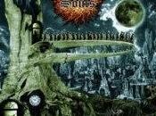 Graveyard Souls Shadows Life