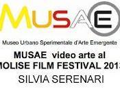 MUSAE videoarte MOLISE FILM FESTIVAL 2013 SILVIA SERENARI
