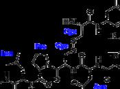Novità sulla chimica dell'amore