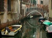 Librarsi Venezia