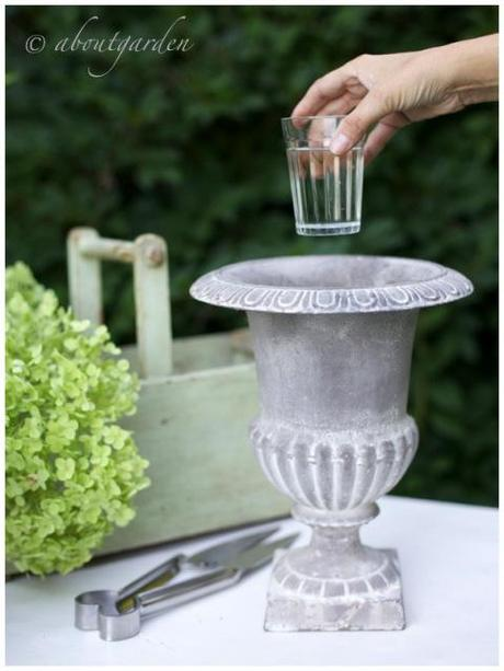 Diy hydrangea topiary paperblog - Bambu in vaso acqua ...