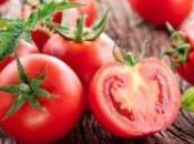 frutto sole l'alleato benessere