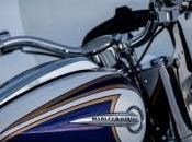 2014 Harley-Davidson trasforma gamma touring