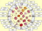 L'orologio Linneo, orologio floreale scandisce tempo grazie fiori sbocciano durante ore.