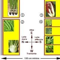Pulizia di un organismo da parassiti risposte di assenzio