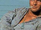 settembre Cinema Classics dedica ciclo martedì Paul Newman, cinque anni dalla scomparsa