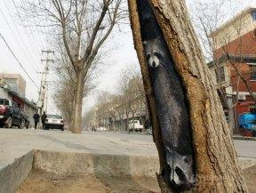 wang-yue-tree-hole-paintings-11