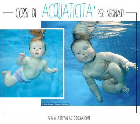 Corsi di acquaticita 39 in piscina per neonati a milano - Corsie per piscine ...