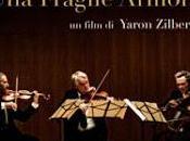 fragile armonia Yaron Zilbermann