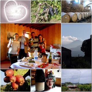 "Tenuta di Fessina, wine tour and tasting: ""a real-life!"""