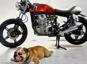 Readers rides: Flakester