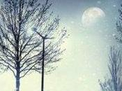 Settembre 2013: luna magica York Suzanne Palmieri (Garzanti)
