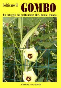 Gli spinaci come coltivarli nell orto paperblog for Gombo ricette