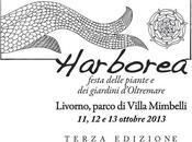 Harborea: fine settimana livornese dire fare