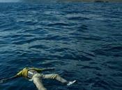 Tragedia Lampedusa: viaggio della speranza diventa disperazione