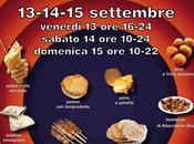 Street food Arezzo 2013