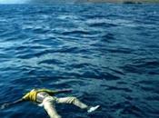 stiamo parlando? Lampedusa, oltre strage. drammatiche ragioni dell'esodo africano