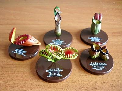Piante carnivore gadget da collezione paperblog for Piante carnivore