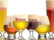 Birre Artigianali, nomi numeri: parola degustatore