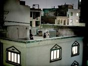 fotoreporter italiano Pietro Masturzo vince World Press Photo Contest