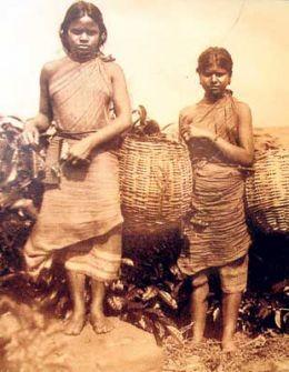 Donne indiane ai tempi della girmitiya