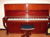 vuole pianoforte?