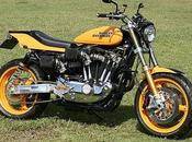 Harley Sportster Special Glory Hole