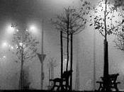 Mentre notte piove...