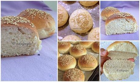 BurgerBuns Collage