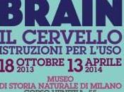 BRAIN cervello istruzioni l'uso, Museo storia naturale MILANO: mostra umano