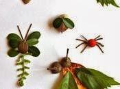 Speciale Autunno: insetti foglie!